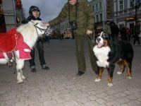 2008-11-08-09-Novgorodi-008