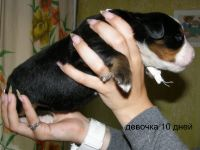 2011-07-21-Pomet-I-022